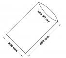 PE sáček průhledný - 300 x 400 mm / 0,09